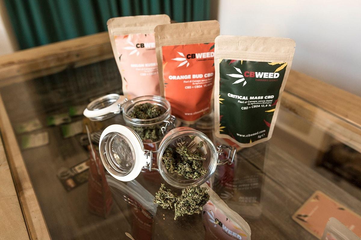 """La marijuana non va sdoganata. San Patrignano sul negozio CbWeed aperto a Rimini: """"messaggio pericoloso"""""""