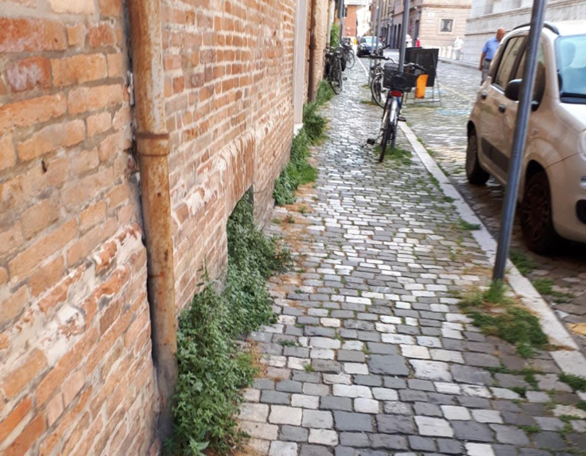 Via Leon Battista Alberti: là dove c'era l'erba… c'è ancora