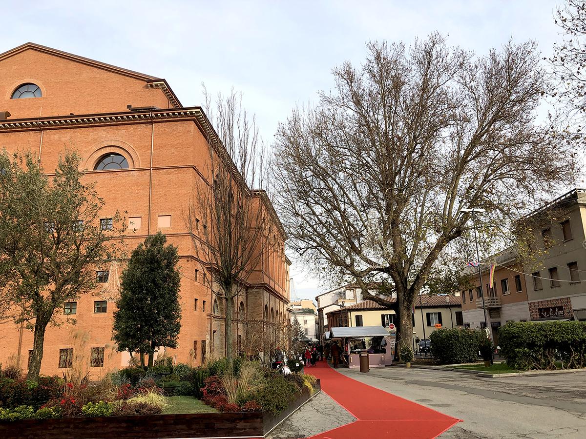 """Rimini città verde? """"C'è ancora molto da fare"""": parla il vicepresidente del Wwf"""