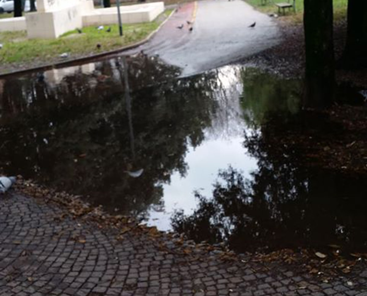 Acqua alta al parco Cervi