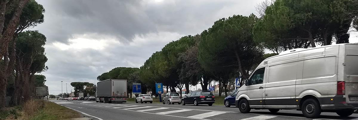 Torte in faccia a chi non sa risolvere il problema della mobilità a Rimini