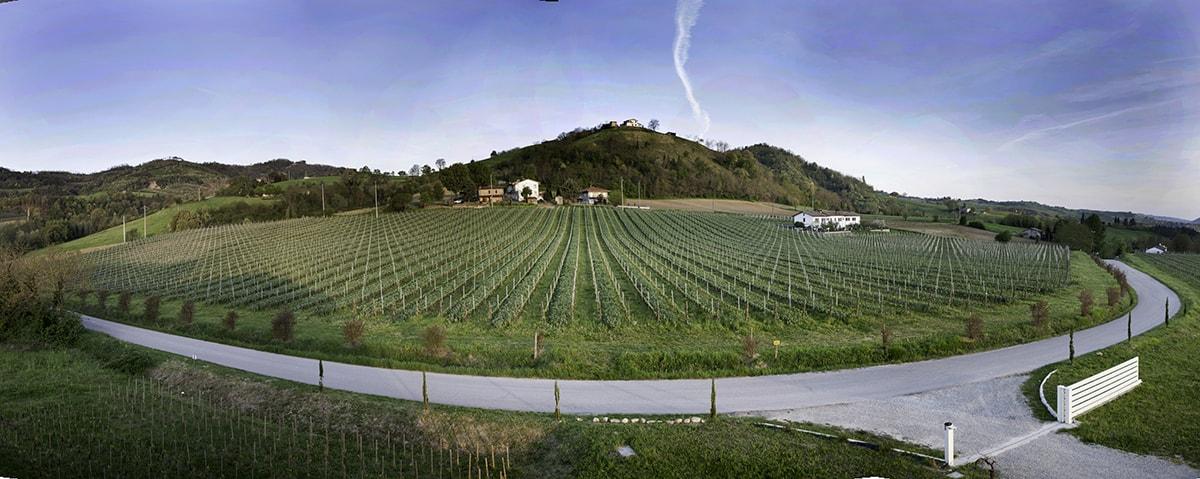 La (bio)dinamica azienda di Paride Benedetti e un vino che è già Famoso