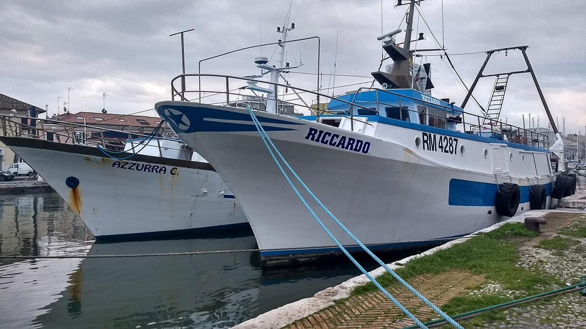 Rimini Resta Senza Flotta Per La Pesca Del Pesce Azzurro Anche Il