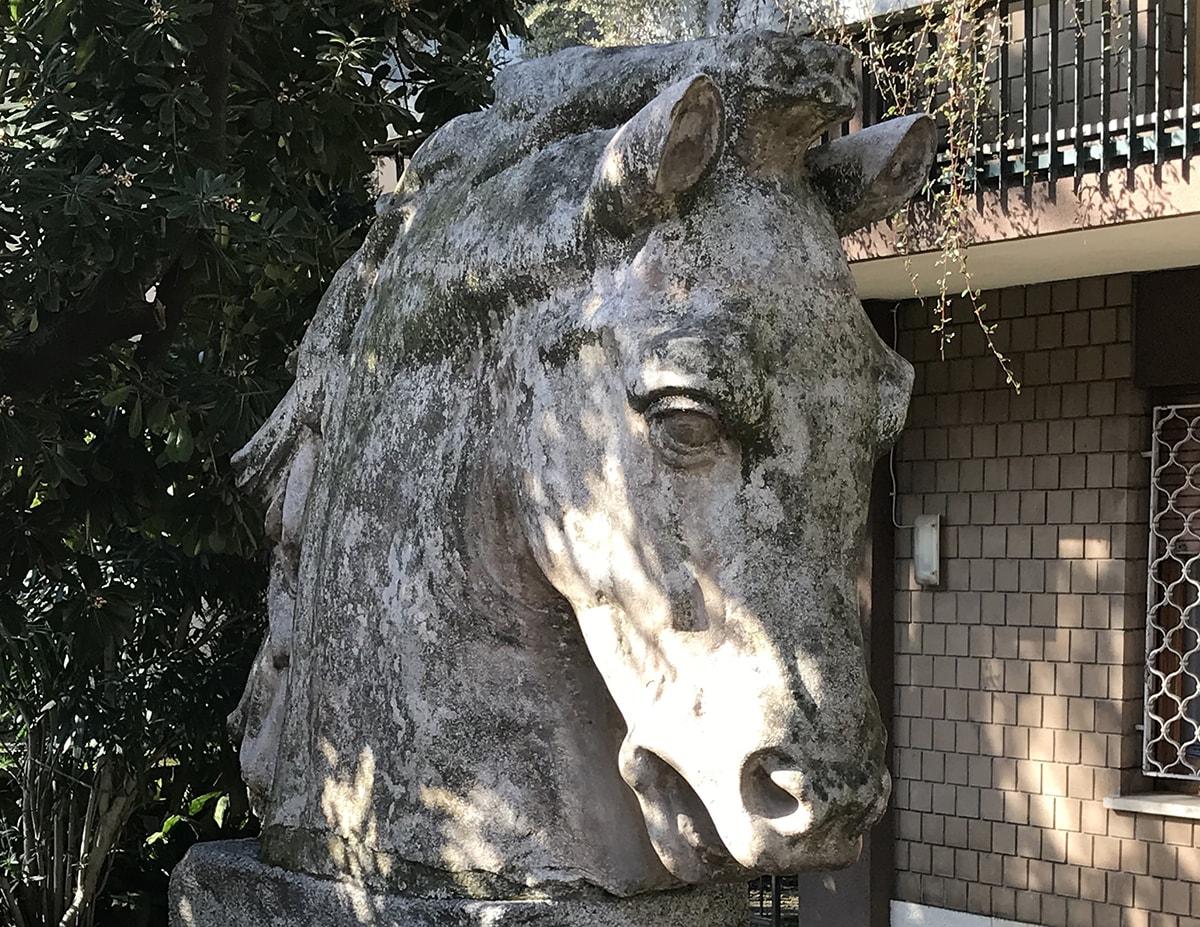 """Ecco il """"purosangue"""" all'origine della Fontana dei Quattro Cavalli"""