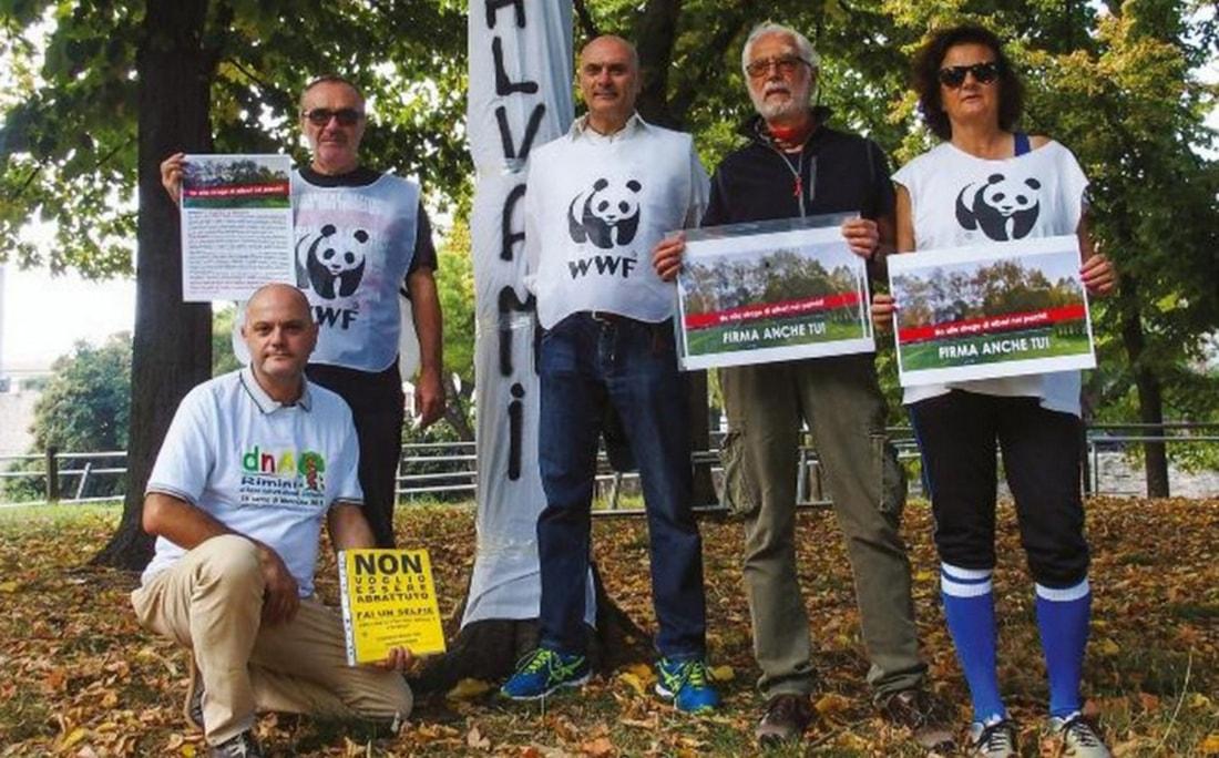 """""""No alla strage di alberi"""": oggi in prima pagina"""