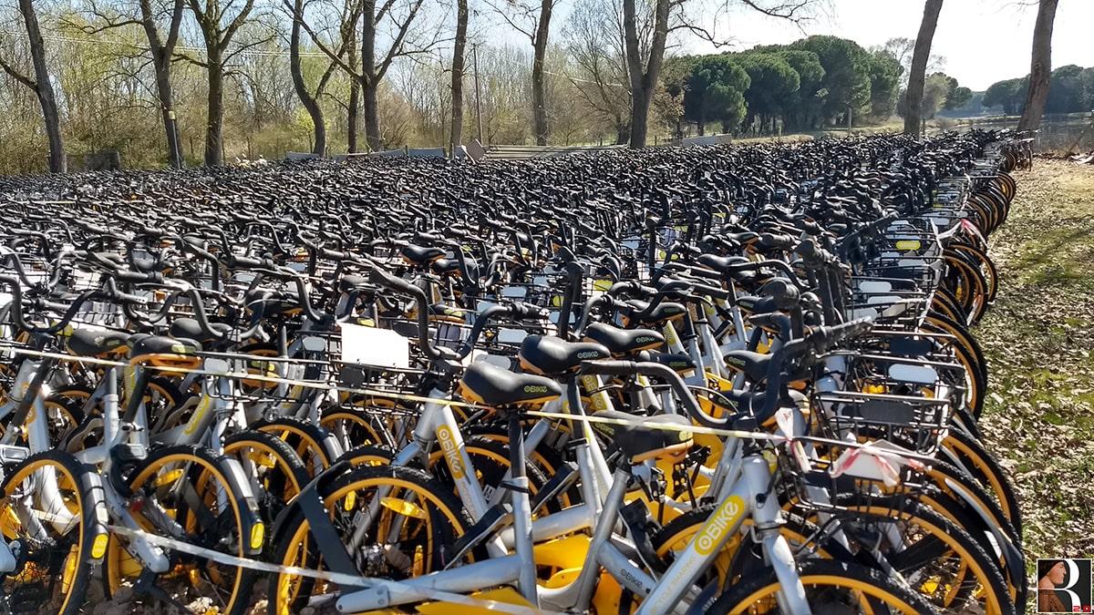 Esclusiva: ecco dove sono finite le biciclette che avevano invaso la riviera e da dove ripartiranno