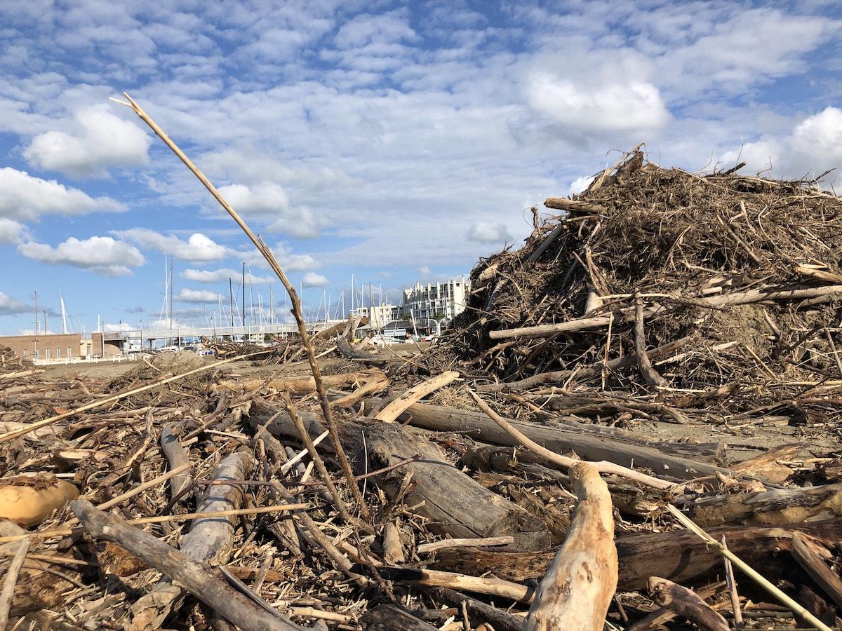 """Il """"gavettone gigante"""" ci lascia un mare di legname e spiagge irriconoscibili"""