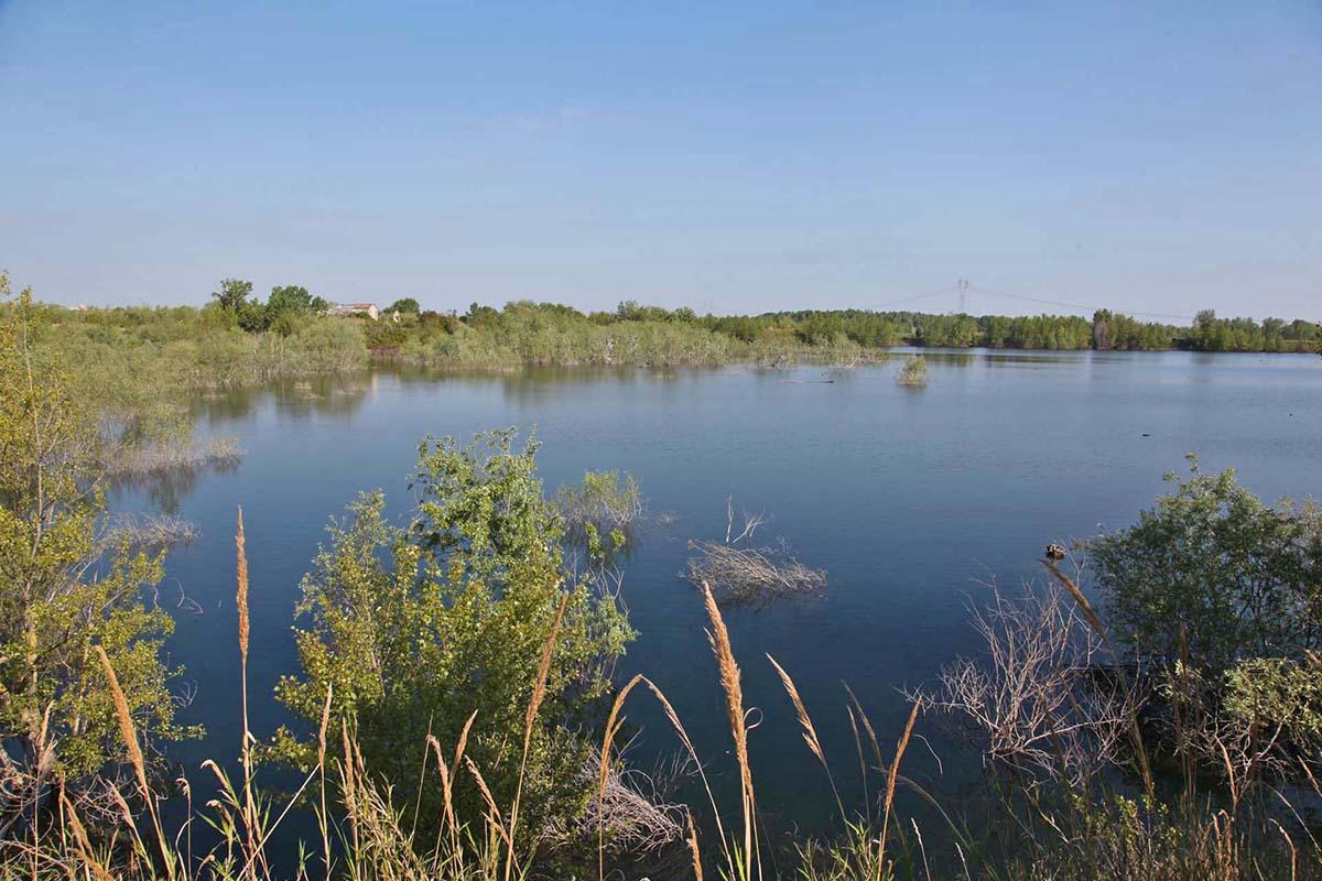 Il fiume Marecchia: la crisi delle falde idriche e l'erosione delle spiagge