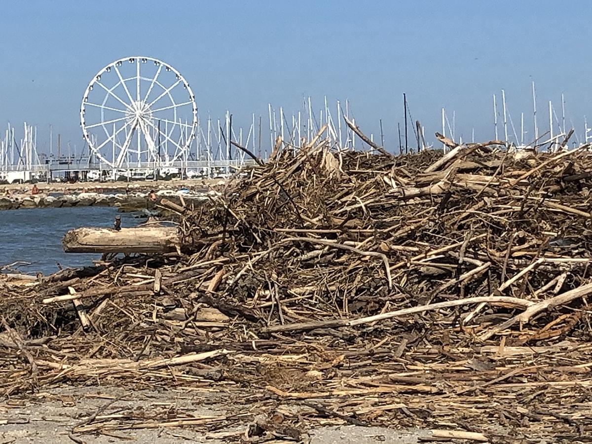 San Giuliano mare ancora invasa dai tronchi