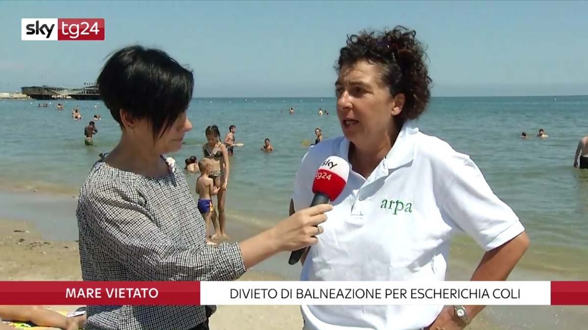 Balneazione vietata: l'intervista di Sky all'esperta di Arpae che fa molto discutere