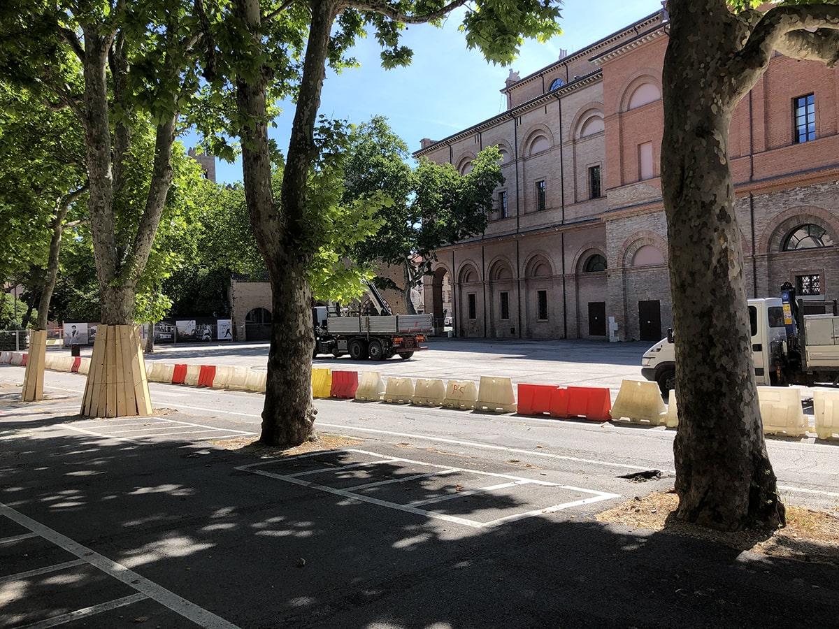 Piazza Malatesta, gli alberi hanno i giorni contati?