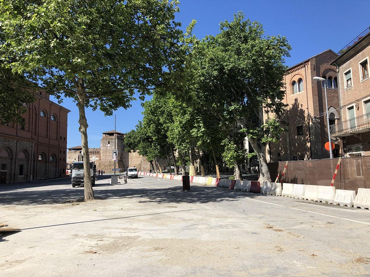 Colpo di scena: sugli alberi di piazza Malatesta qualcuno non la racconta giusta