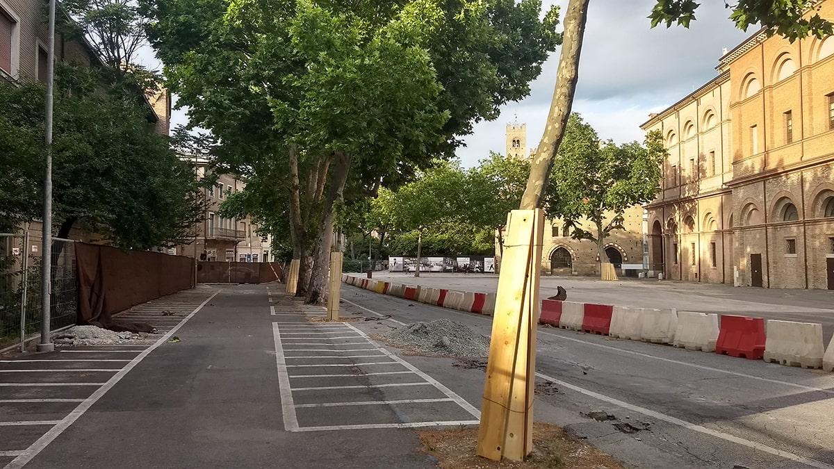 """""""Sindaco, non faccia tagliare gli alberi di piazza Malatesta"""""""