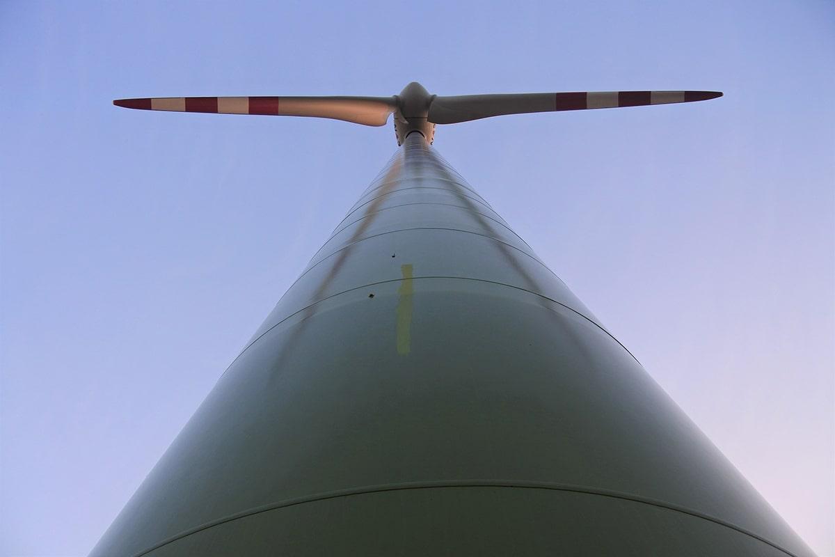 «La centrale eolica? Inutile e devastante per la Riviera romagnola»: parla il prof. Battaglia